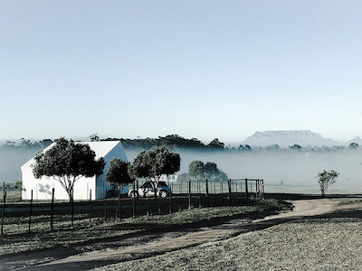 CITRA Office, Ostrich Ranch. Energy efficient office space in the mist of Cape Town